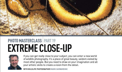 Learn a New Photography Trick or Two; Entire BBC Photo Masterclasses Now Available Online