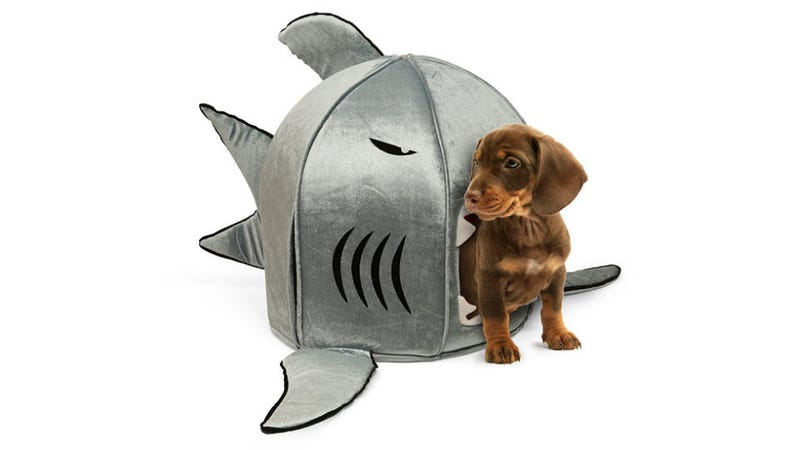 This Adorable Nanotech Shark Will Swallow Your Puppy Whole