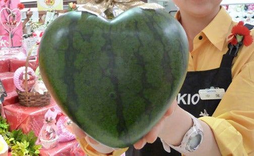 Japanese Find Out How to Make Heart-Shaped Watermelons