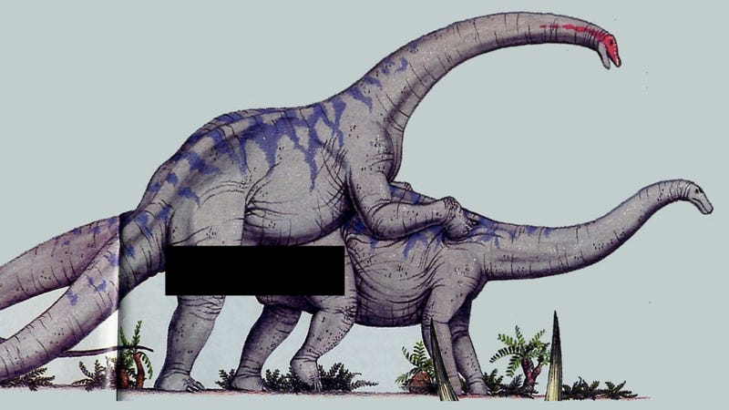 How did gigantic dinosaurs like Brachiosaurus get it on?