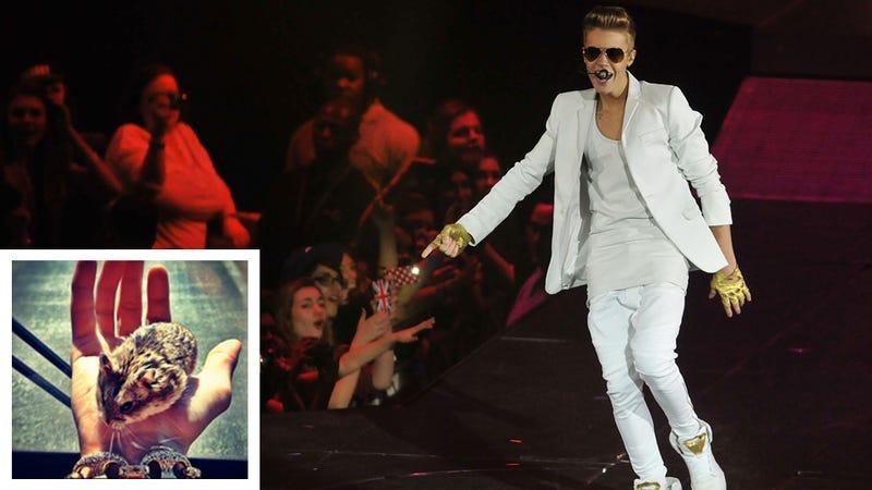 Justin Bieber's Hamster Is Dead