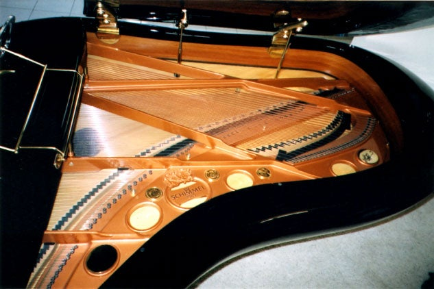 Schimmel Pegasus Grand Piano Could Probably Travel Through Time and Space