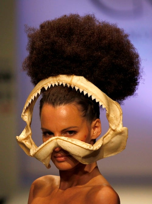 Designers Confuse Fashion Week With Shark Week