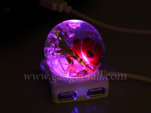 Find Nemo Floating in a Four-Way USB Hub. Verdict: Fishy!