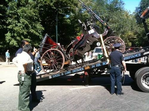 Cab Crash with Horse and Carriage: New York Death Possibility #427