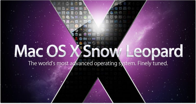 Everything You Need to Know About Snow Leopard