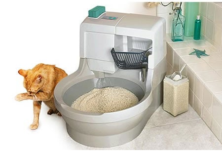 Cat Genie Allows Cats to Poop Like Humans