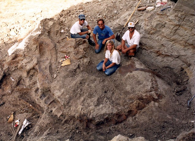 A Chat With the Paleontologist Who Unearthed The World's Biggest T-Rex