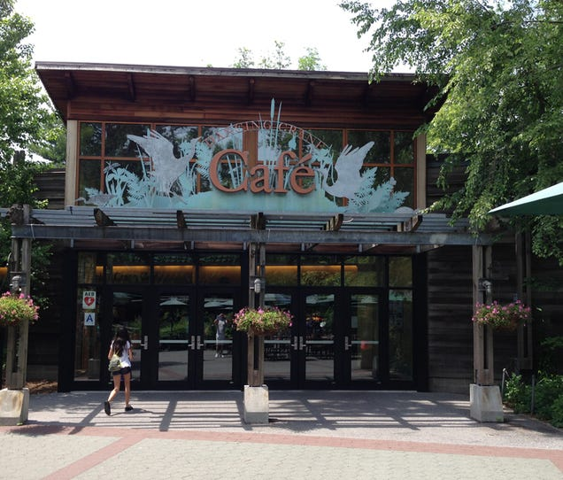 The Best Restaurant In New York Is The Bronx Zoo