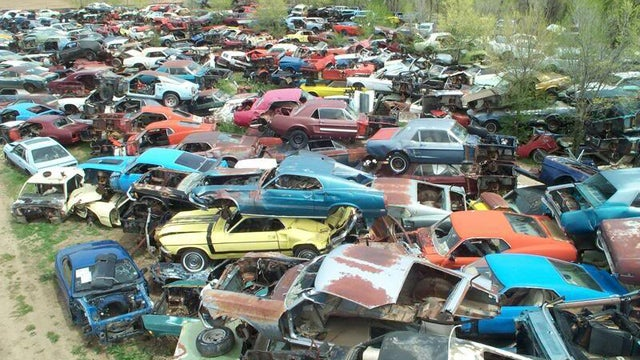 Is This The World's Largest Vintage Mustang Junkyard?