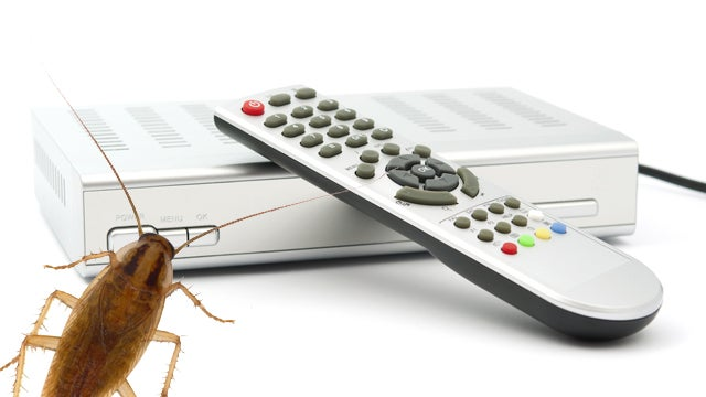 Comcast Provides Free Roach Infestation with Cable Installation