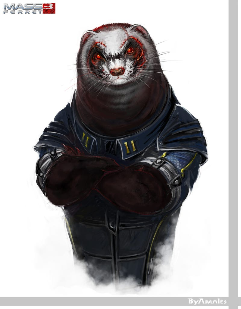 Ferrets as Famous Video Game Characters. It's Way Better Than You Think.