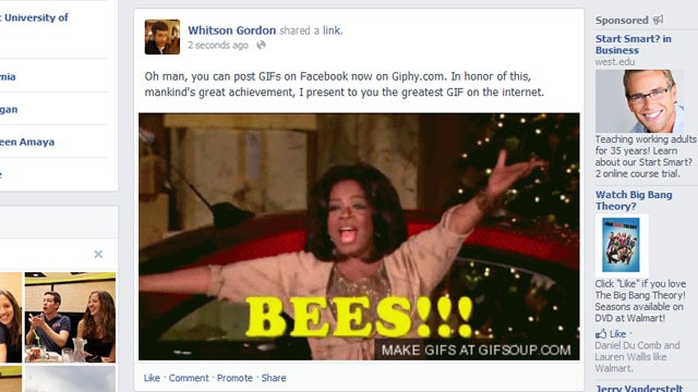 Giphy Embeds GIFs on Facebook, Is Mankind's Greatest Achievement