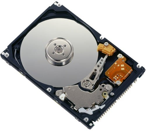 Fujitsu MHW2040AC Hard Disk: For Polar Bears and Camels, Apparently