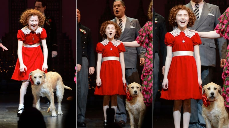 The New Annie Is Adorable (Sandy's a Cutie, Too)