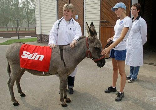 Rupert Murdoch Adopts Parasailing Russian Donkey