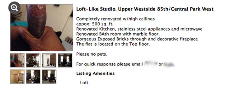 NYC Realtor Lists Gorgeous $2000 Loft Located Inside Spacious Penis