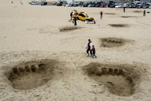 Gulliver Leaves Footprints