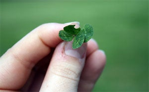 How Beginner's Luck Works and How You Can Reproduce It Anytime (Even If You're Not a Beginner)