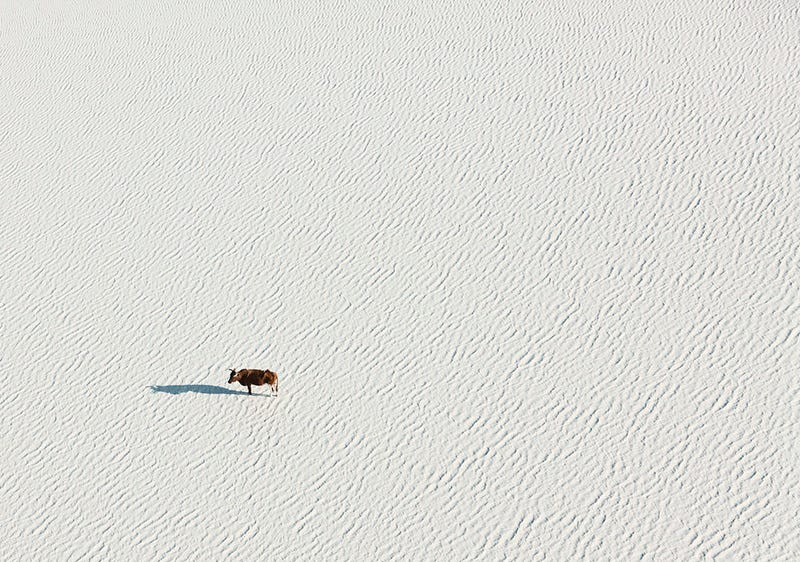 Fantastic aerial photos of Botswana make me wish I was there right now
