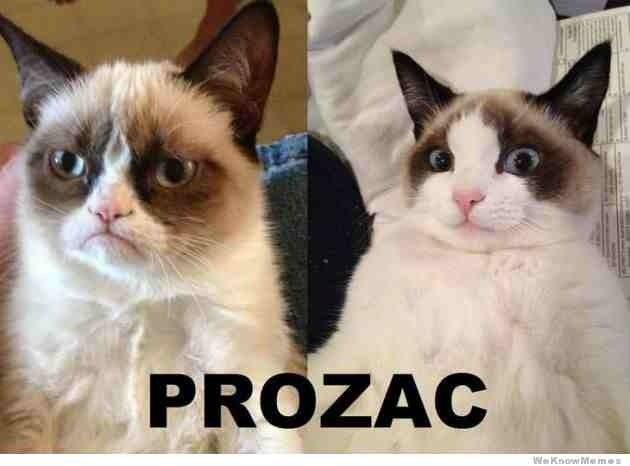Prozac is a goddamned wonder drug