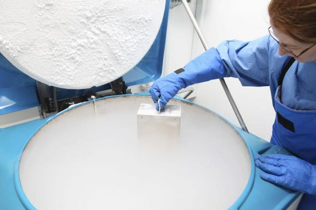 Egg Freezing: How We Reschedule Nature With Liquid Nitrogen