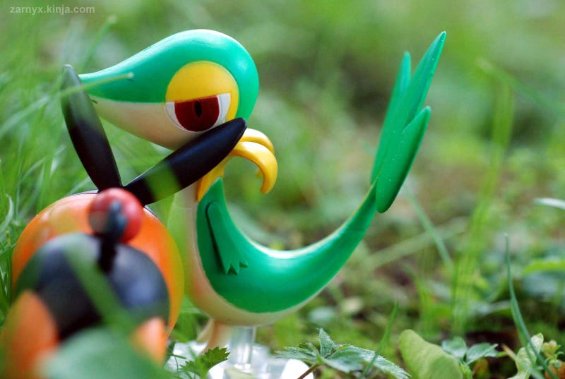 Pokémon (OH) Snap!: Hiding in the Tall Grass...(Part II)