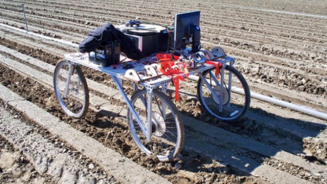 This Weed-Killing Robot Dispatches Dandelions with 98 Percent Accuracy