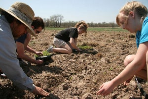 Community Supported Agriculture: What It Is and Why You Should Join