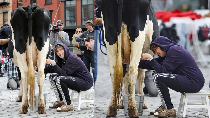 Here is Lena Dunham Milking A Cow On The Street Just Because