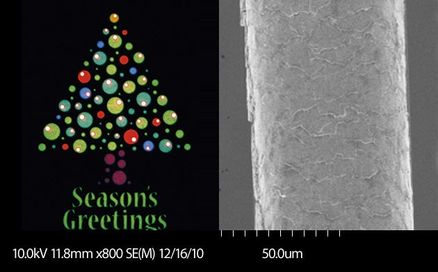 This Is the Smallest Season's Greetings Card In the World