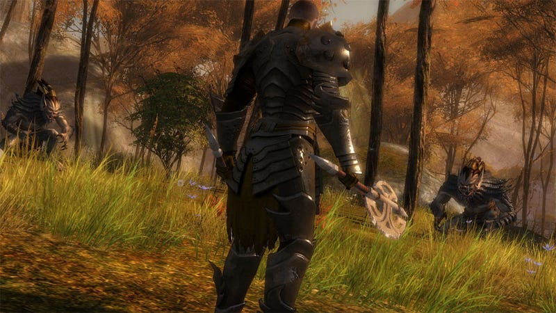 What Guild Wars 2 Questions Do You Want Answered?