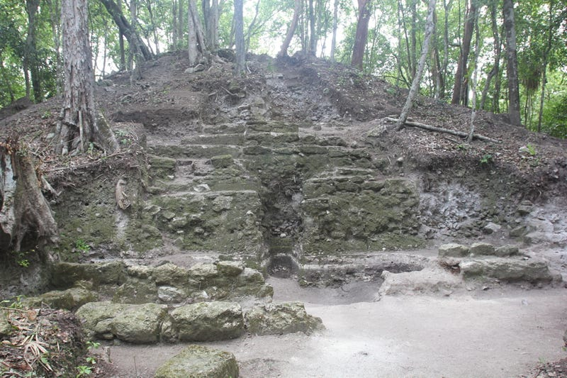 Even Deadly Snakes and Monkey Shit Couldn't Stop Me From Excavating Maya Ruins in the Jungle