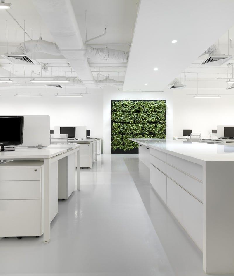 En el interior de las 11 oficinas mejor dise adas del a o for Empresa diseno de interiores