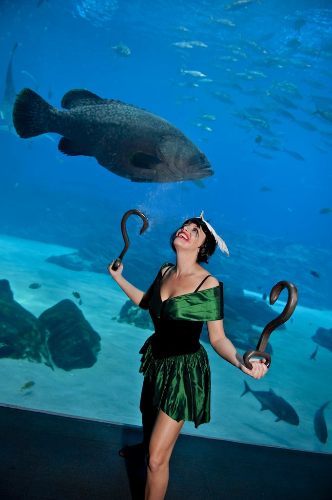 It Was A Very BioShock Night at the Aquarium