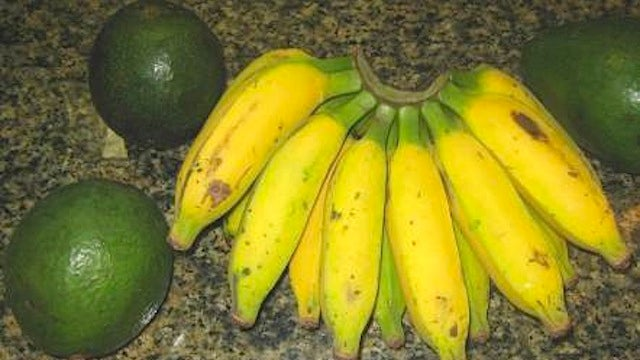 Use a Banana to Quickly Ripen an Avocado