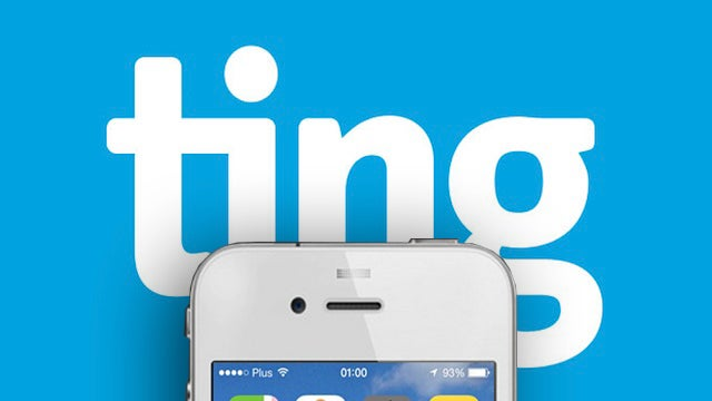 A La Carte Cellphone Carrier Ting Has a Semi-Secret iPhone User Beta
