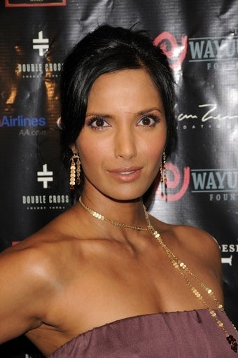 Five Pitches for Burgeoning Sitcom Star Padma Lakshmi