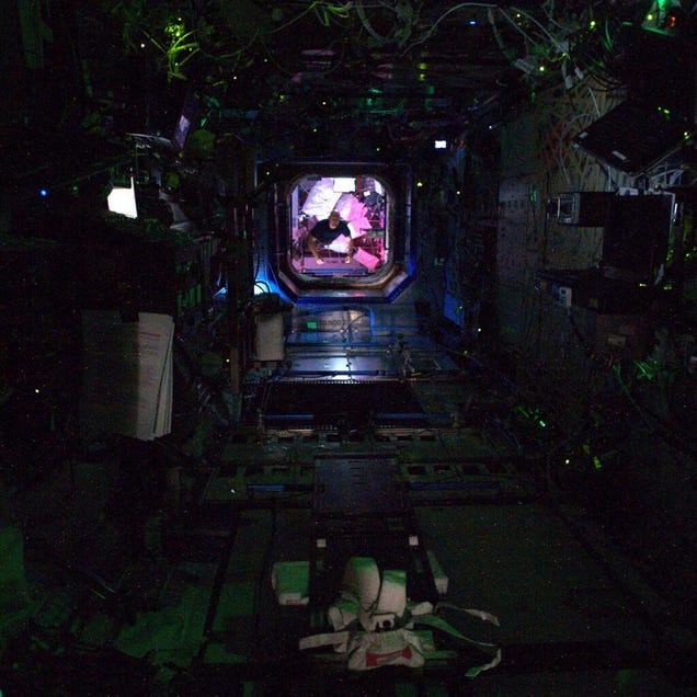 This photo of the ISS looks like a scene from a space horror movie