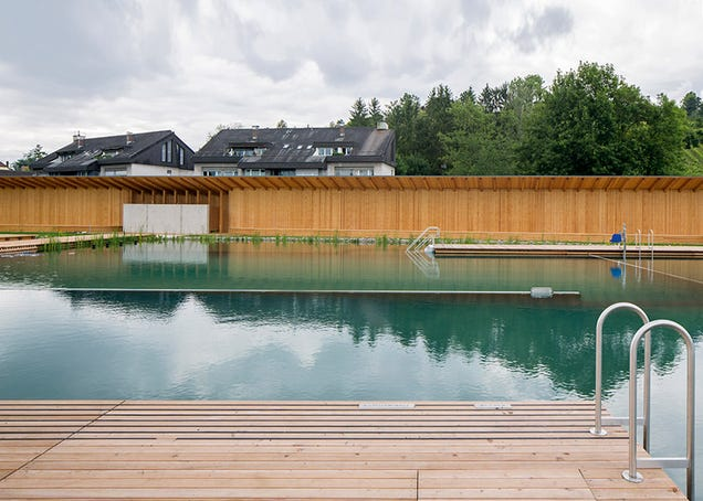 This Chlorine-Free Pool Is Biofiltered and Freaking Beautiful