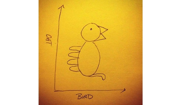 Cat-Bird Graph Is the Only Optical Illusion We Need