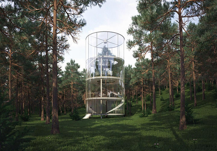 8 Buildings Designed to Incorporate the Trees Around Them