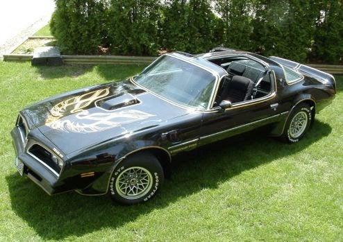 Muscle Car Wars Of 1978: Hood Decals Strike Back
