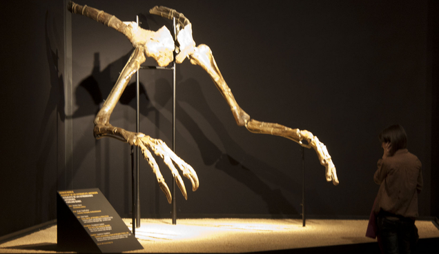 Finally Found: The Body That Goes With These Monstrous Dinosaur Arms
