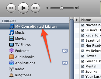 Bring a Consolidated Library View Back to iTunes