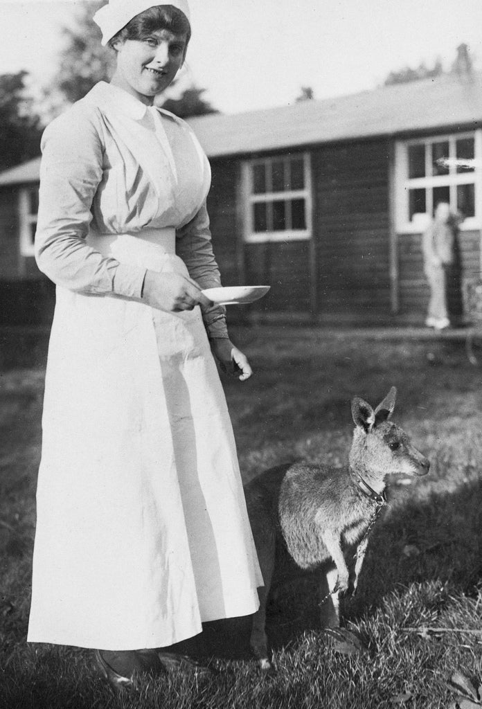 Australia took kangaroos as mascots to World War I