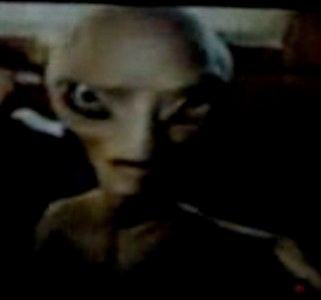 Stare into the black eyes of Seth Rogen's alien, Paul