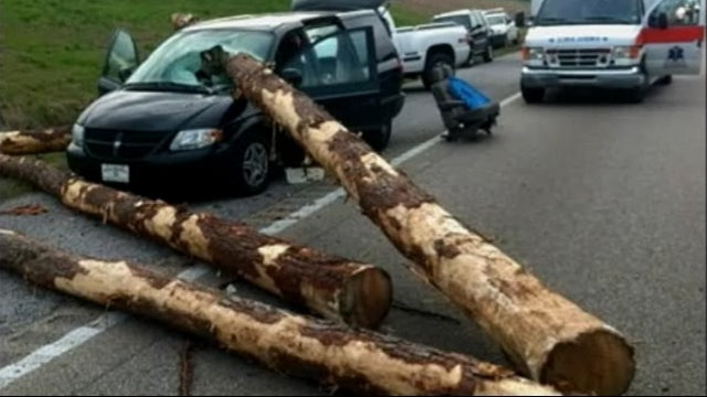 See Frightening Pictures Of A Minivan Impaled By A Log