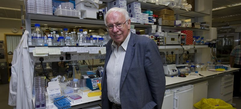 DNA Repair Earned the Nobel Prize in Chemistry, and Here's Why