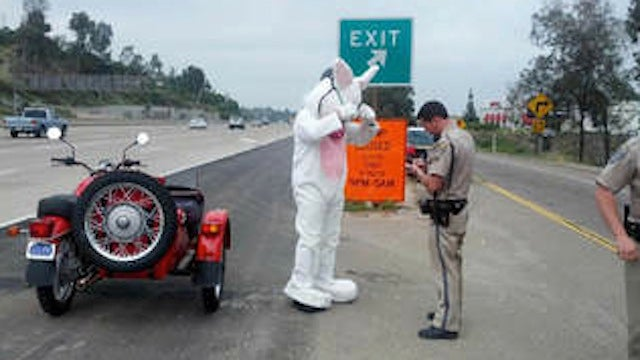 Motorcycle-Driving Easter Bunny Pulled Over, Lectured for Driving Without Helmet
